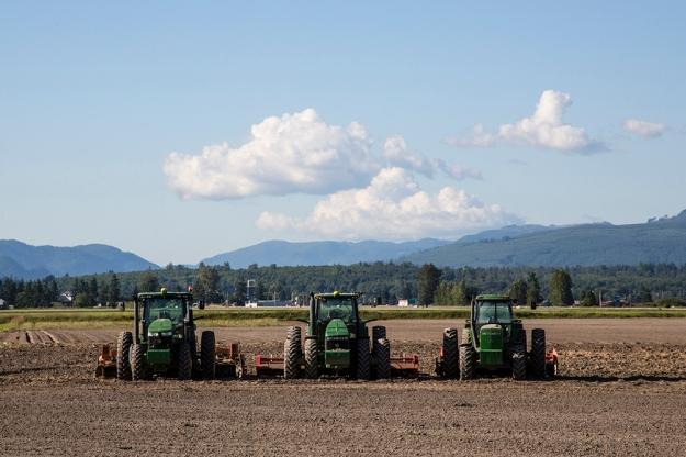 Tractors-BrookeWarren-003ps