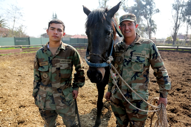 (From left) Soldiers Jesús Cordero and Adrian Mallea pose with Panteon the horse after a rigorous training on August 24, 2013 at Campo Militar San Bernardo in Santiago, Chile.