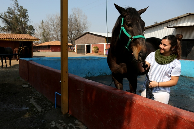 Beatrice Muñoz, 19, finishes washing her horse on August 24, 2013 at Campo Militar San Bernardo in Santigo, Chile. Tons of dust covers the horses after equestrian riding classes she takes at the arena each Saturday.