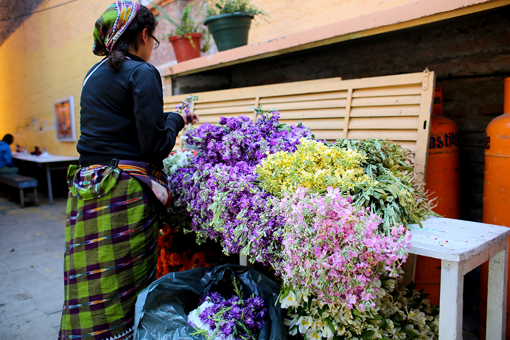 Tatiana Ortega prepares flower garlands for the Janmastami Festival. Hundreds of people gathered to celebrate the Janmastami Festival that commemorates the birth of the Hindu god Krishna on August 28, 2013 at Hare Krishna Temple in Santiago, Chile.