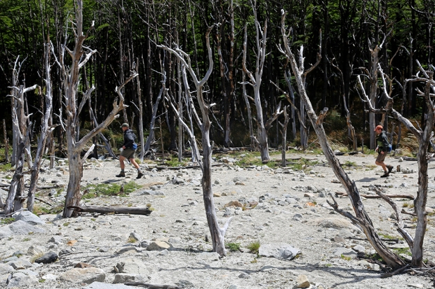 Zac Cobb, left, and Connor Watumull dash through a section of burned forest in Torres del Paine National Park in Patagonia, Chile.